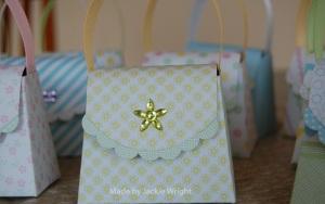 purse-boxes-for-enrichment-close-up21