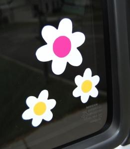 Big Shot flowers close up