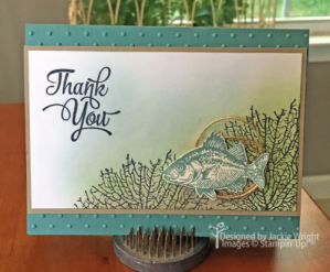 thank-you-sponged-fish-in-sea